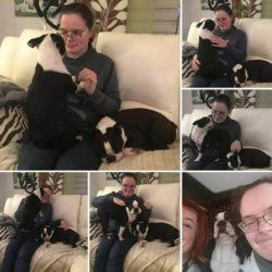 Boston-Terrier-Kennel-Hessenvilla-Handicaped-Children-g5-min