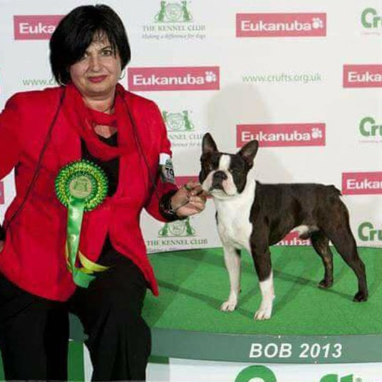 Hessenvillas-Kennel-Boston-Elvis-Crufts-2013-2-min-min