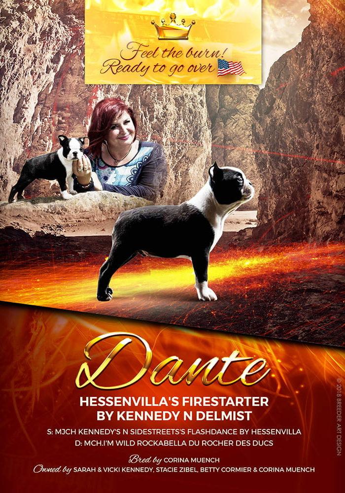 Hessenvillas-Dante-advert-min